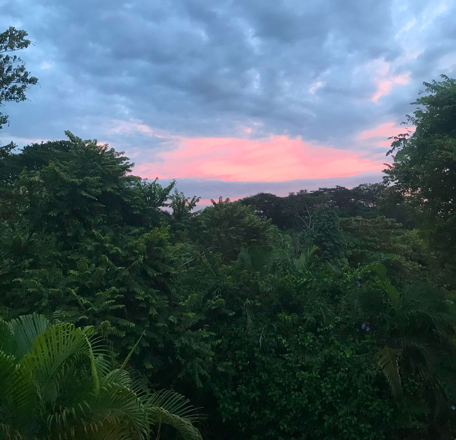 pura vida sunset view from lodging